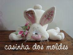 apostila-coelho-felix