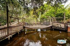 This charming Old Florida family attraction is newly renovated and features 3 ½ acres of lush tropical botanical gardens and zoological park. Learn about Southwest Florida environment and many animals, birds and reptiles.  See flamingos, alligators, exotic birds and more. Everglades Wonder Gardens Bonita Springs, Florida.