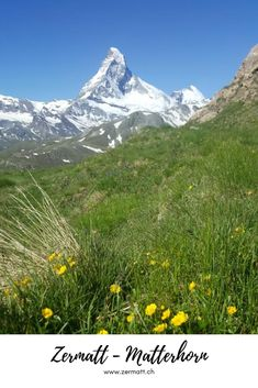 Zermatt – Matterhorn: In Zermatt every hiking day has the potential to be perfect. Use our tips for inspiration and experience your personal perfect hiking day. #Zermatt #Matterhorn Zermatt, Swiss Alps, Tour Operator, Dream Vacations, Switzerland, Travel Inspiration, Athlete, Tourism, Hiking