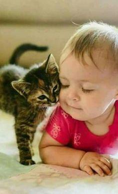Want more cute kittens? So Cute Baby, Cute Kids, Cute Babies, Animals For Kids, Cute Baby Animals, Animals And Pets, Funny Animals, Funniest Animals, Cute Kittens