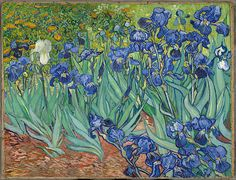 """dominusvenustas: """" Vincent van Gogh, Irises, 1889 Theme of the day in case you hadn't guessed…. Van Gogh's irises. Van gogh's glorious irises. The vibrant colours and wonderful rhythms say all. Art Van, Van Gogh Art, Van Gogh Pinturas, Vincent Van Gogh, Claude Monet, Rembrandt, Iris Painting, Van Gogh Paintings, Flower Paintings"""
