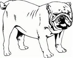 Bulldog Coloring Page - AZ Coloring Pages | dogs to color | Pinterest