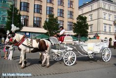 Przejażdżka dorożką na Rynek, Wawel, Kazimierz http://krakowforfun.com/pl/8/transfer/dorozki