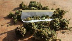 Canada's First PTSD and Marijuana Study to Take Place in Kelowna