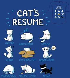 Cat's Resume: Hunter; Sleep Expert; Stylist; Singer; Box Inspector; Negotiator; Food Disposal; Abstract Artist; Ninja. [kitty]