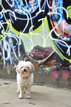 Graffiti and my best friend