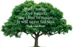 Defend nature is our best friend