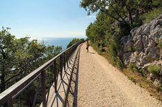 The Strada Napoleonica In Trieste