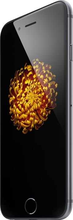 ORDER NOW iPhone 6  SHIPS ON SAME DAY ORDER NOW