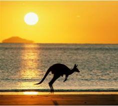 Cursar mi semestre internacional en Australia.