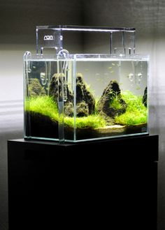 ADA Mini Aquarium. Aquasky LED Lightning, Lily pipes and Co2.