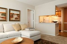 20 Apartments Ideas Apartment Arden House Apartment Investments