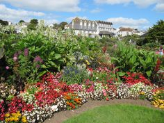 Queen Mary Gardens, Gyllyngvase Beach, Falmouth, Cornwall (2011 -  won a Gold Award in the annual 'Britain in Bloom' competition