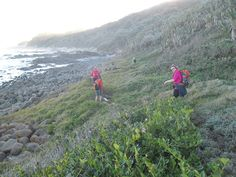 Hiking the Transkei hills Cape, Hiking, Mountains, World, Places, Nature, Travel, Mantle, Walks