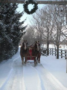 sleigh ride in winter Winter Love, Winter Snow, Winter Christmas, Merry Christmas, Christmas Horses, Christmas Ideas, Winter Pictures, Christmas Pictures, Dashing Through The Snow