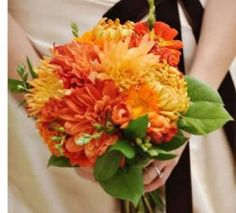 Chrysanthemum wedding bouquets - natural flowers that look great when combined with chrysanthemums or used in the same bouquet arrangement are: marigolds, gerbera daises, dahlias, sunflowers, narcissuses, daffodils, roses, peonies, tulips, calla lilies, sweet peas, anemones, ranunculus, gardenias, carnations, amaryllis, lotus, magnolias, orchids, irises, hibiscus, baby's breath, plumerias, delphiniums, gladiolas, asters, freesias or hydrangeas.