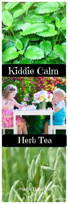 This herb blend is calming and uplifting too. Helps kids to be 'present' and better able to focus. Calms upset tummies and soothes nervous system!