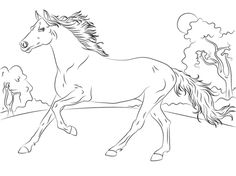 Collect Horses Coloring Pages Free