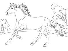 Ausmalbilder Pferde Turnier  Ausmalbilder Pferde Kostenlos Zum