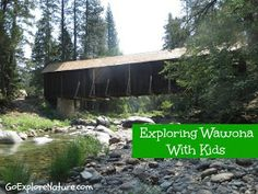Yosemite National Park: Exploring Wawona With Kids