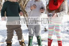 Fun winter activity. Pinecone hunt for kids.