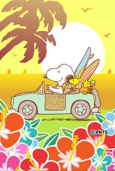 Snoopy and Woodstock Snoopy Love, Snoopy And Woodstock, Happy Snoopy, Peanuts Cartoon, Peanuts Snoopy, Snoopy Cartoon, Love Quotes Funny, Funny Love, Summer Humor