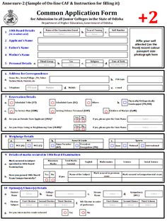 A Job Application Online Form Carries The Details Of An Individual