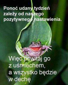 Good Morning, Humor, Funny, Text Posts, Polish Sayings, Good Morning Funny, Buen Dia, Bonjour, Humour