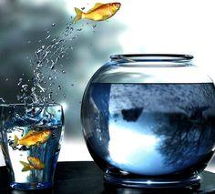 """""""Un pessimiste voit la difficulté dans chaque opportunité, un optimiste voit l'opportunité dans chaque difficulté""""  Winston Churchill, homme d'état britannique du 20ème siècle"""