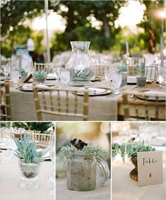 succulent floral arrangements This woman incorporated succulents a lot in her wedding- we could so easily make those succulent jar centerpieces! I'm going to make some for my classroom this year- I'll keep you posted! @daniellesturgis