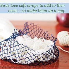 Attract birds into your garden with this secret gardening tips. For more creative gardening tips visit http://www.readersdigest.com.au/creative-gardening-tips