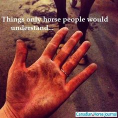 Dirty horses! Or if you are wearing gloves when your horse is shedding you get a furry hand!