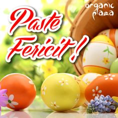 Paste Fericit! Happy Easter, Easter Eggs, Past, Album, Happy Easter Day, Past Tense, Card Book