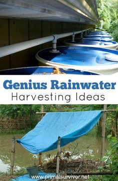 Genius Rainwater Harvesting Ideas for Survival Situations. But going from 100 gallons to 2 gallons per day is going to be a big change. You'll probably end up using more than you realize, and soon your precious stockpile of water will be gone. So you will need to have a way to replenish your water supply. And that is where rainwater harvesting comes in.
