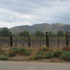 Photo of Agua Dulce Winery - Agua Dulce, CA, United States
