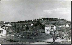 Altunizadeden  1959