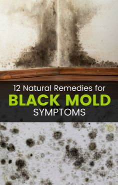 Black Mold Exposure And Poisoning Can Cause A Wide Range Of Health Problems