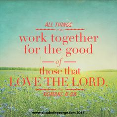 """""""All things work together for the good of those that love the Lord."""" -Romans 2:28"""