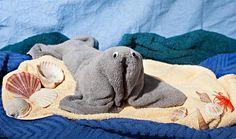 "Handtuchfigur Handtuch-Tier /""Elefant plus Duschtuch in Geschenkverpackung"