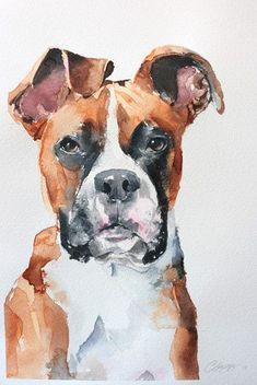 Watercolor Boxer Dog With Images Dog Paintings Watercolor Dog