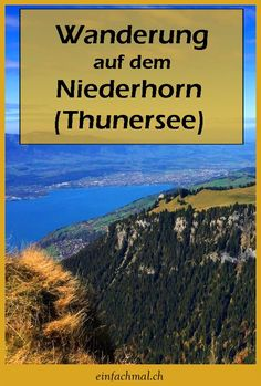Panoramawanderung auf dem Niederhorn (Thunersee). Alle Informationen zu dieser Wanderung (Höhenprofil, Wegbeschreibung, Kartenausschnitt) Seen, Oh The Places You'll Go, Trekking, The Good Place, Wanderlust, Hiking, Travelling, Travel Ideas, Europe