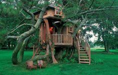 knus boom huisje