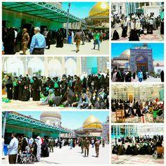 [ 26 Shaban 1437 ]   The Atmosphere Inside Al-Askari Holy Shrine.
