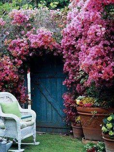 Roses forever