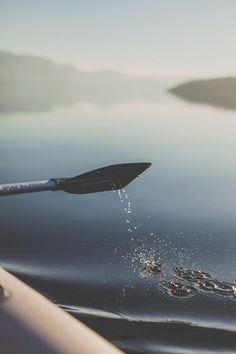 canoe or kayak on a crystal lake in the mist by a forest of evergreens and mountains Photos Encadrées, Pictures, Nature Sauvage, Canoe And Kayak, All Nature, To Infinity And Beyond, Lake Life, Kayaking, Canoeing