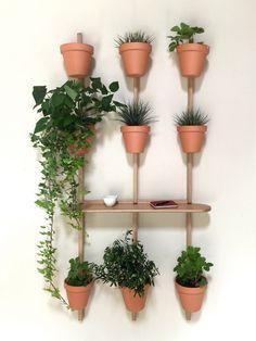 Oak plant pot XPOT by Compagnie design Pascal Grossiord #vase #plantpot #green #homedecoration