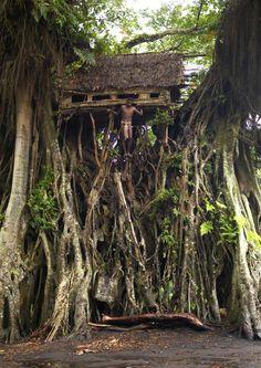 Banyan Tree House in Tanna Island, Vanuatu