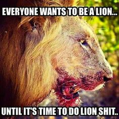 Everybody wants to be a Lion. Until it& time to do Lion shit& (at Bushido Temple) God Family Country, Fearless Quotes, Lion Quotes, Leo Women, The Ugly Truth, All About Cats, People Talk, Big Cats, Make Me Smile