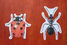 Crapouillotage: Zoologie Puzzle Montessori, Puzzles, Fete Halloween, Illustration, Disney Characters, Fictional Characters, Homeschooling, Dogs, Inspired