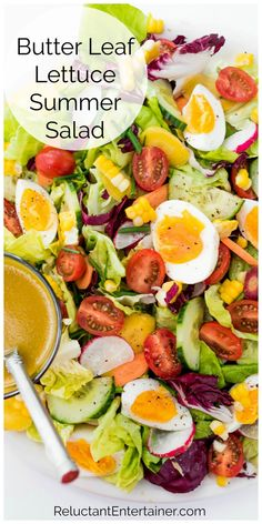 A Butter Leaf Lettuce Summer Salad, made with tender butter lettuce, tossed with a honey Dijon vinaigrette. Top with fresh veggies and soft boiled eggs! Lettuce Salad Recipes, Easy Salad Recipes, Salad Dressing Recipes, Easy Salads, Egg Recipes, Summer Salads, Healthy Recipes, Fish Salad, Pasta Salad